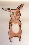 Bunny Blonde