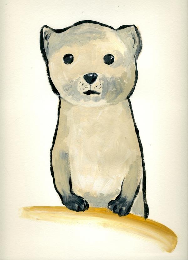 black-footed-ferret600